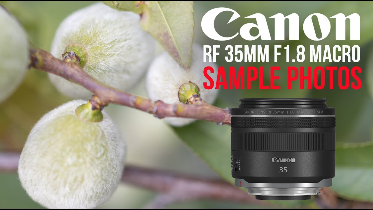 Why I love 💕the Canon 35mm RF 1.8 macro lens – EOS R